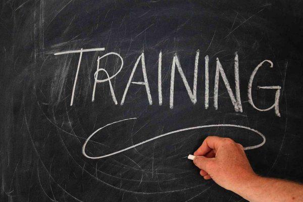 tréningy a rozvojové aktivity